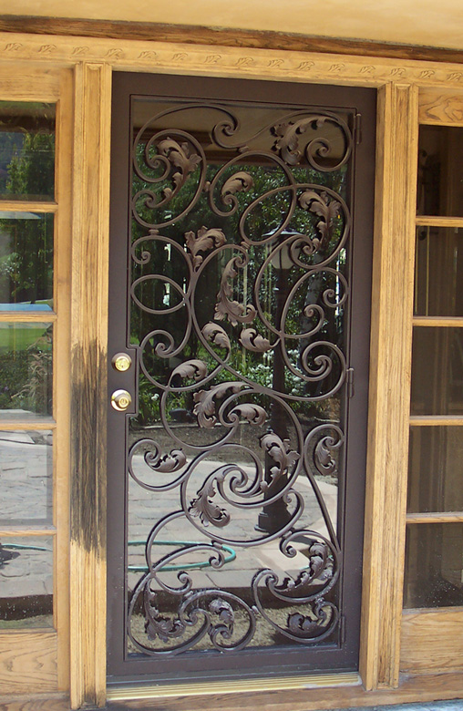 Roberts Iron Works - Hand Forged Iron Frame Door - D2